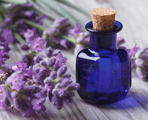 Lavender Oil Usage