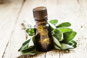 Essential Salvia Oil