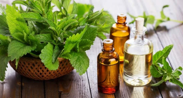 Benefits of Peppermint Essential Oil 2