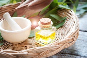 Benefits of Eucalyptus Essential Oil