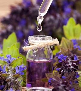 Dragonhead Essential Oil