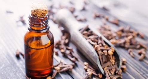 Benefits of Essential Oil of Clove